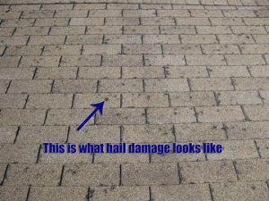 hail-damage-roof