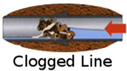 Clogged lateral line