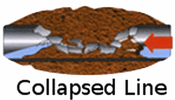 Collapsed lateral line